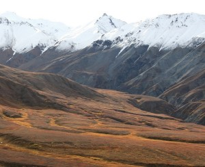 best-us-hiking-spots-denali