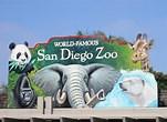 sandiego zoo
